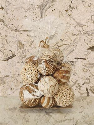 FOSSIL MARBLE