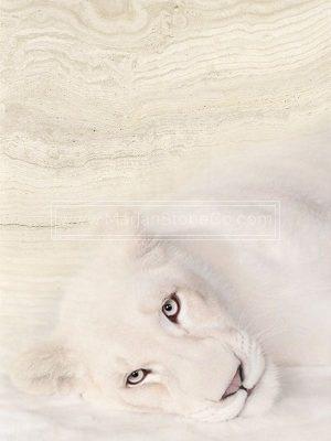 تراورتن سفید