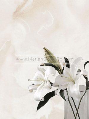 مرمر سفید